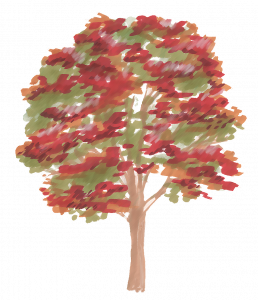 375-Elevation_Feutre_Arbre_22.png 131