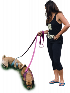 62-womanWalkingDogsSideFront.png 178